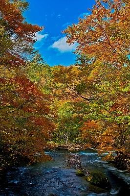 river_00090-s.jpg